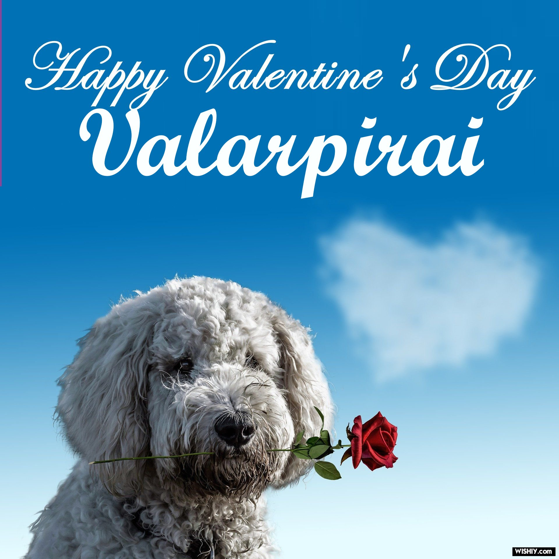 25 Best Love Images For Valarpirai Instant Download 2020